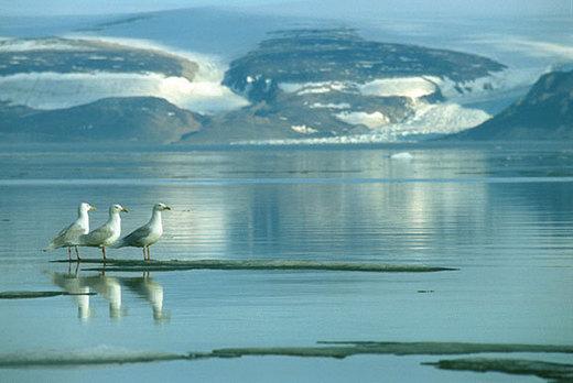 野望世界尽头格陵兰岛 那里海水正蓝